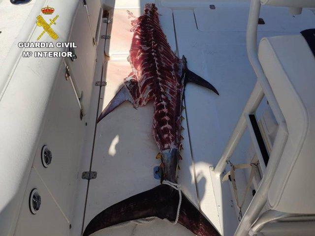 Alicante.- Sucesos.- Denunciadas dos embarcaciones de recreo por pescar atún roj