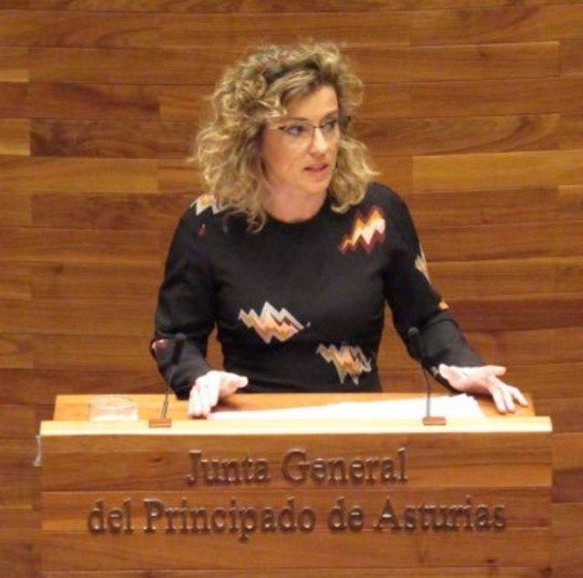 La diputada de Ciudadanos, Susana Fernández en una imagen de archivo.