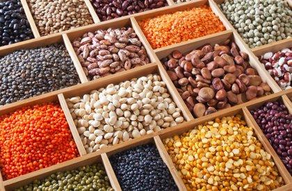 Las legumbres pueden formar parte de una dieta saludable en mayores