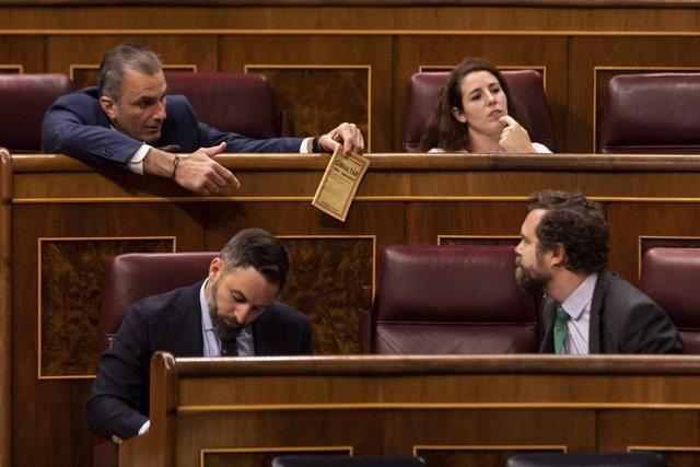 Los diputados de VOX Javier Ortega Smith (arriba) e Iván Espinosa de los Monteros (abajo, derecha) charlan en el Congreso.