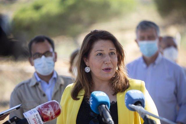 """Almería.-Crespo defiende las """"garantías medioambientales"""" exigidas al proyecto d"""