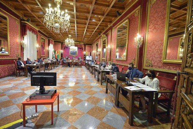Pleno del Ayuntamiento de Granada, en su reunión ordinaria de junio de 2020