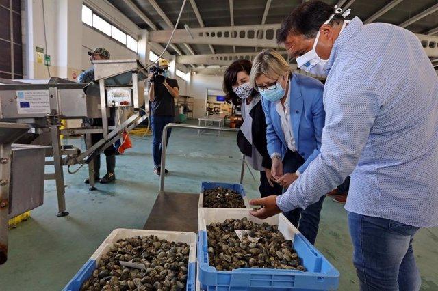La conselleira do Mar, Rosa Quintana, en una visita al centro de estabulación de marisco de la lonja de la Illa de Arousa (Pontevedra).