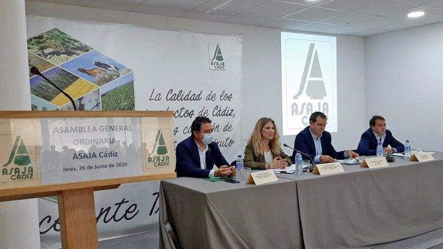 Cádiz.-Coronavirus.- Mestre destaca el apoyo de la Junta al campo con medidas fr