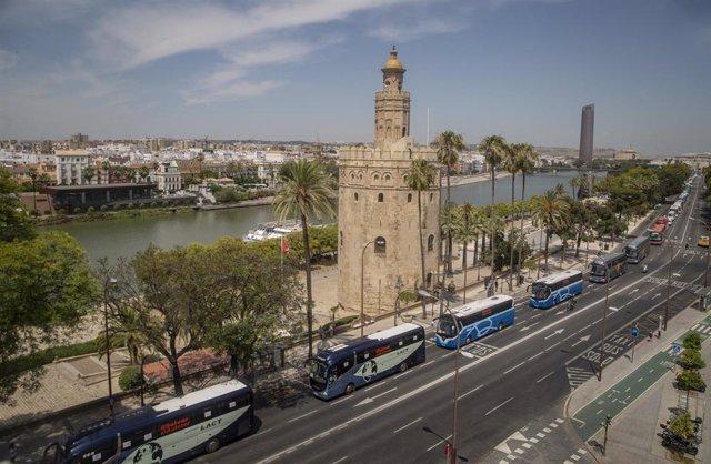 Imagen de la concentración de los autobuses del transporte discrecional, escolar y turístico en Sevilla, el pasado 10 de junio.