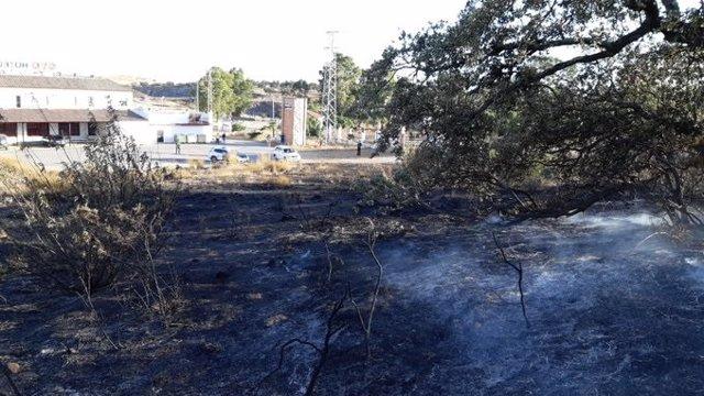 Incendio forestal en Guillena (Sevilla)