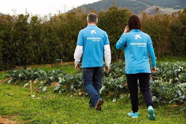 Voluntarios de 'la Caixa' en Andalucía organizan una jornada digital sobre el medio ambiente para familias
