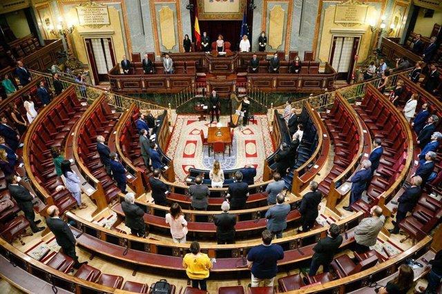 El Congreso rinde su homenaje anual a las víctimas del terrorismo, con Bildu en
