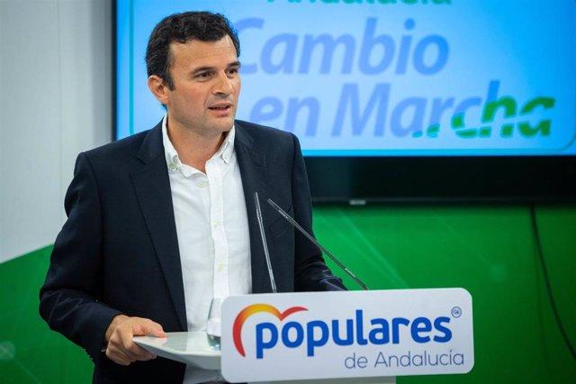 El diputado autonómico por el Partido Popular de Cádiz y miembro de la Comisión de Estudio sobre la recuperación económica y social de Andalucía constituida en el Parlamento andaluz, Bruno García, en una foto de archivo