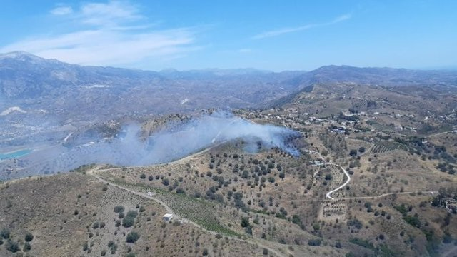 Incendio forestal en La Viñuela