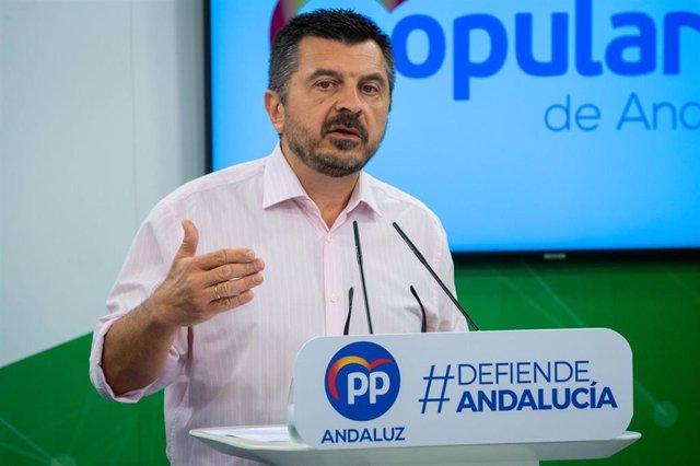 El vicesecretario general del PP-A, Toni Martín, en una foto de archivo