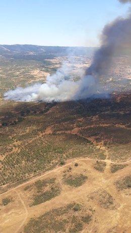Incendio declarado en el paraje Finca de Santa Catalina, en Cabezas Rubias