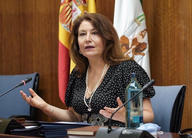 """Almería.-Crespo dice que """"estudiarán"""" alegaciones ecologistas para el hotel en G"""