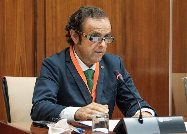 El presidente de Fandabús (Federación Andaluza Empresarial de Transporte en Autobús), Valeriano Díaz, este lunes durante su comparecencia en el Parlamento de Andalucía.