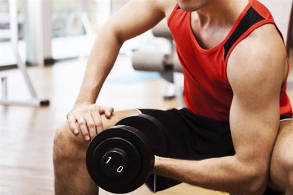Las primeras semanas de levantar pesas fortalecen el sistema nervioso, no los músculos