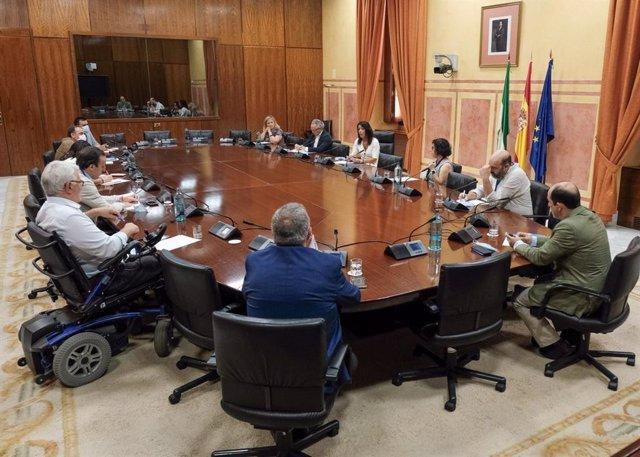 La presidenta del Parlamento de Andalucía, Marta Bosquet, reunida con colectivos del Tercer Sector