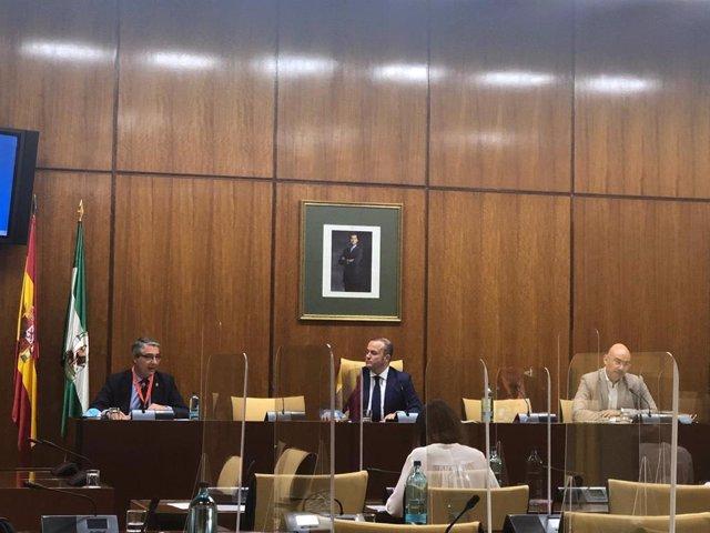 El presidente de la Diputación de Málaga, Francisco Salado en el Parlamento andaluz en la Comisión de estudio sobre la recuperación económica y social de Andalucía
