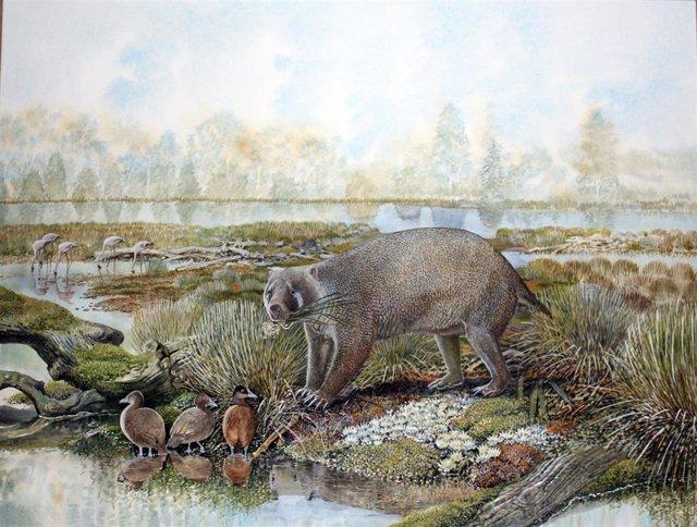 Impresión artística de 'Mukupirna nambensis'