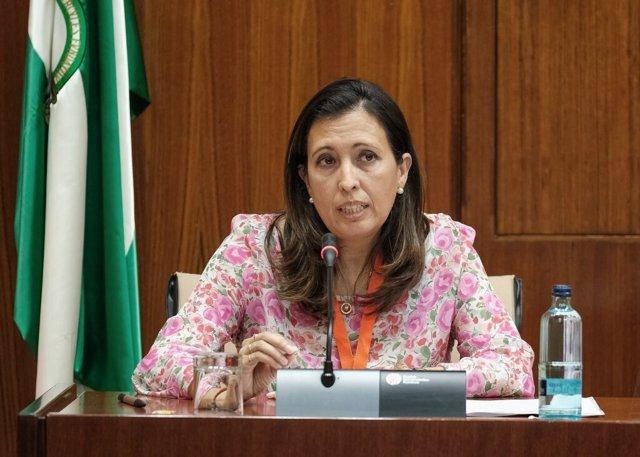 La presidenta de Ceacop, Ana Chocano, durante su comparecencia en la Subcomisión de Reactivación Económica del Parlamento de Andalucía.