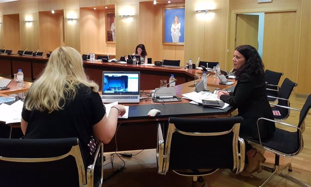 Reunión del Grupo de Trabajo del Plan de Abordaje de Terapias Avanzadas del Sistema Nacional de Salud (SNS) en el Ministerio de Sanidad