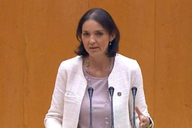 Reyes Maroto en el Senado.