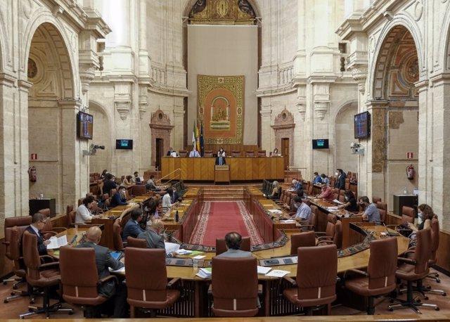 El Pleno del Parlamento andaluz durante el debate de una iniciativa