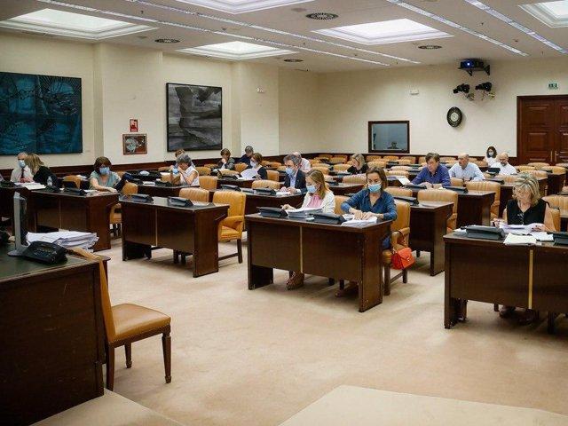 Grupo de trabajo de Sanidad de la Comisión de Reconstrucción en el Congreso