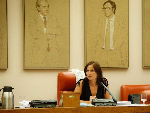 La coordinadora del grupo de reactivación económica de la Comisión del Congreso para la reconstrucción, Luz Martínez-Seijo