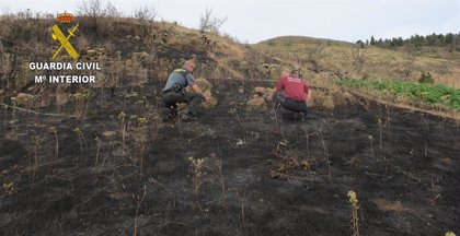 Detenidas dos personas por un delito de incendio forestal en Las Lagunetas (Gran Canaria) tras una imprudencia