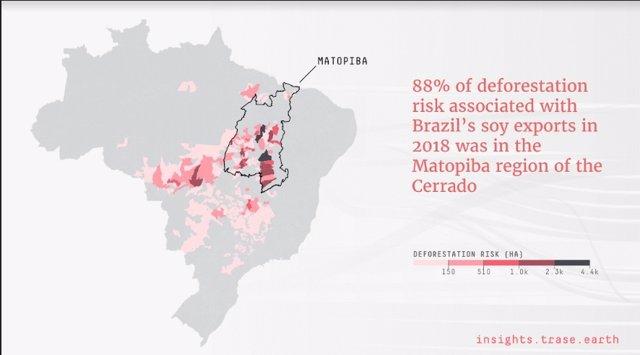 """Un informe que analiza los datos ofrecidos por empresas multinacionales revelan que más de la mitad de la deforestación se produce en el 5 por ciento del territorio por """"un puñado de empresas""""."""