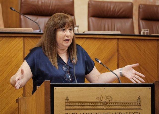 La portavoz socialista de Igualdad y Políticas Sociales, Soledad Pérez, durante una intervención ante el Pleno
