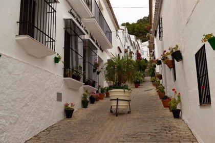 El Plan Provincial de Arbolado Urbano 2019-2020 de Diputación de Cádiz distribuye 34.664 unidades de material vegetal