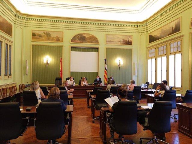 Comisión de Educación, Universidad e Investigación del Parlament.