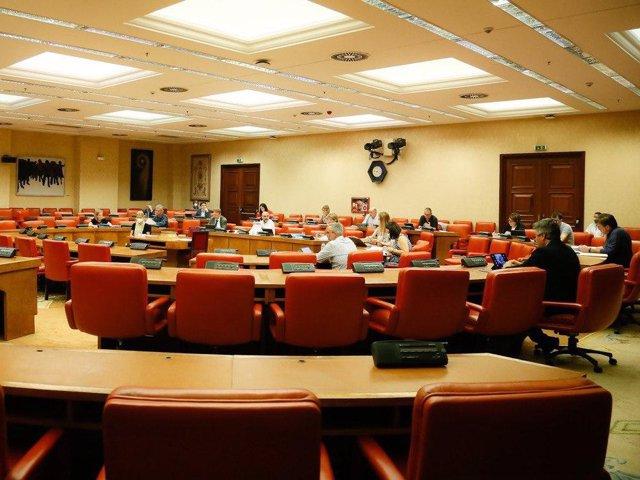Imagen del grupo de reactivación económica de la Comisión del Congreso para la reconstrucción social y económica tras la crisis del coronavirus