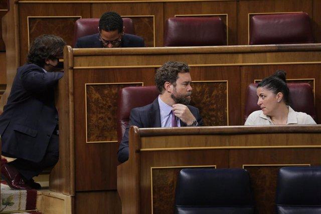 El portavoz de Vox en el Congreso, Iván Espinosa de los Monteros,  con Macarena Olona, secretaria general del grupo parlamentario
