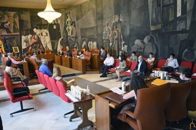 Pleno en la Diputación de Ciudad Real.