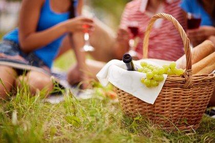 Cómo realizar 'picnics' saludable