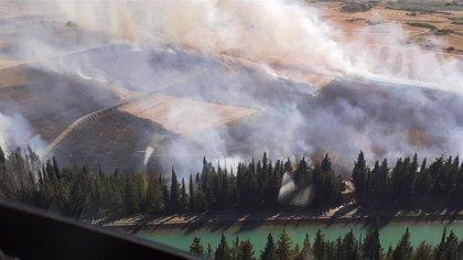 Un incendio quema 24 hectáreas de terreno en San Isidro del Pinar