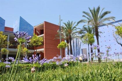 El campus de Gandia de la UPV repite como mejor centro de España para estudiar 4 de sus 5 grados según el U-Ranking 2020