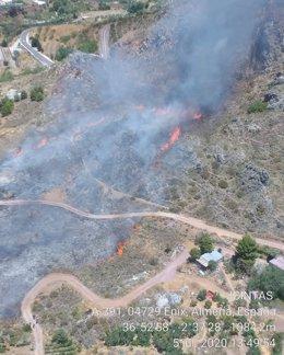 Dan por estabilizado un incendio forestal en Enix