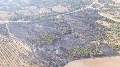 Extinguido el incendio forestal de Belalcázar (Córdoba)