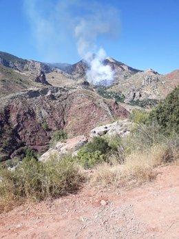 Incendio forestal en Hinojares (Jaén)