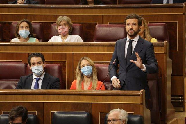 El líder del PP, Pablo Casado, en el Pleno del Congreso. En Madrid (España), a 24 de junio de 2020.