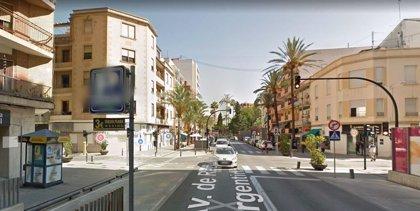 Herido un hombre al ser atacado por un perro en Gandia (Valencia)