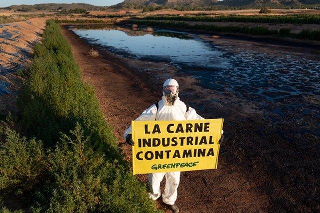 Acción de Greenpeace en macrogranja de Hellín (Albacete) en junio de 2019 para exigir una moratoria estatal a la ganadería industrial y la reducción de la cabaña ganadera por su impacto en el cambio climático, la deforestación y contaminación.