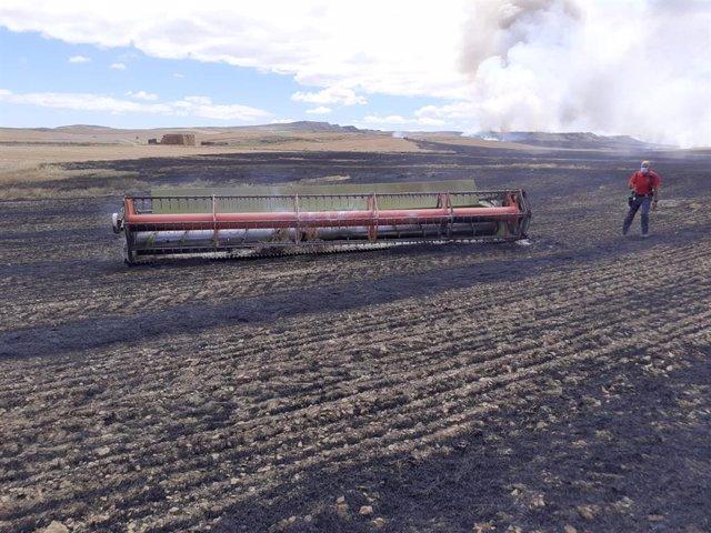 Incendio en un campo de cereal de Lerín