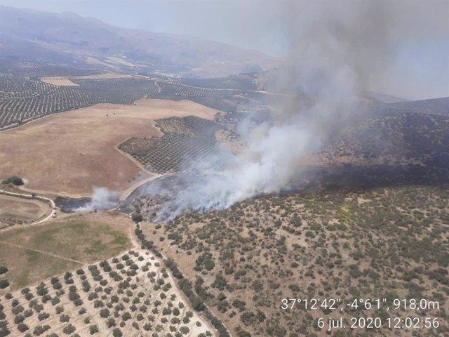 Incendio en un paraje de Loja (Granada)