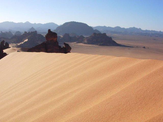 Las algas del desierto arrojan luz sobre la tolerancia a la desecación en las pl