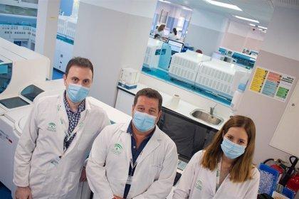 El Hospital Virgen del Rocío identifica biomarcadores que detectan en una hora la gravedad de la Covid-19 en el paciente