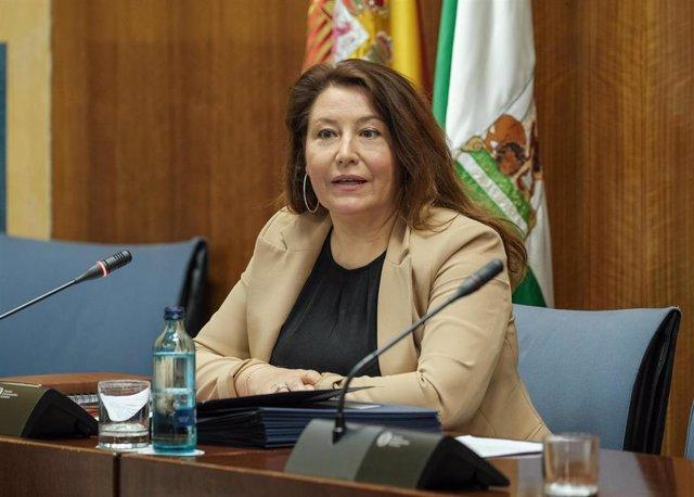 Carmen Crespo, en comisión parlamentaria